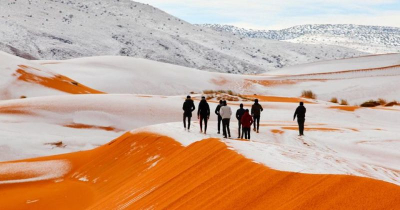 Borë në Saharë