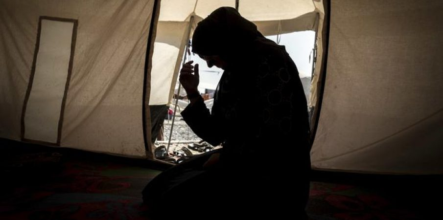 Kampe refugjatësh në Shqipëri? Zyrtari austriak pranon se kanë një plan…
