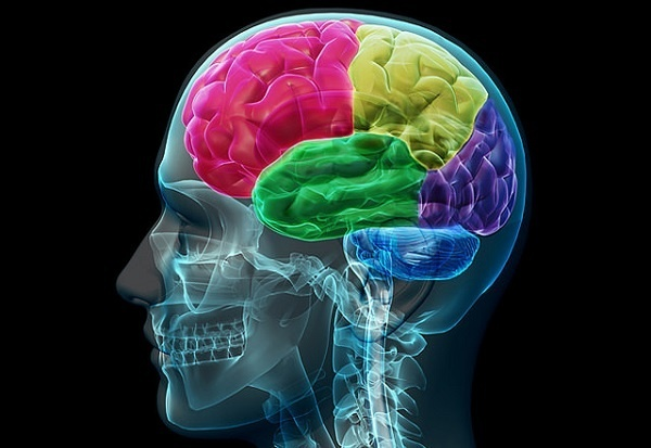 24 vjet pa trurin e vogël